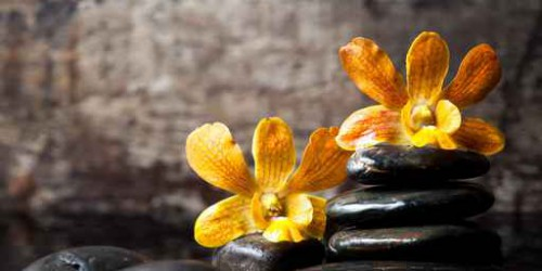 spa concept zen stones and orchid,wood background